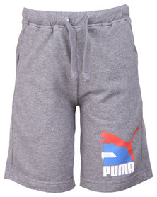 Puma Fun TD Sweat Bermudas Grey