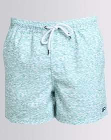 Shotgun Printed Swimshorts Mint