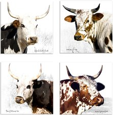 Umhhehhe Nguni Cow Coaster Set of 4
