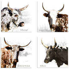 Inkone Nguni Cow Coaster Set of 4