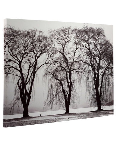 Novelonline black and white trees canvas