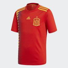 Spain Home Replica Jersey