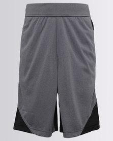 Puma Boys Gym Poly Shorts Grey