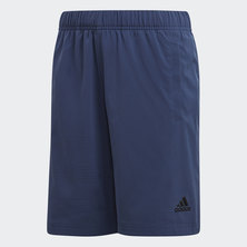 Training Hero Shorts