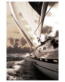 NovelOnline Sail Boat II Canvas Print