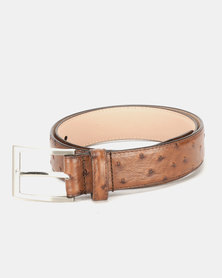 JCrew Ostrich Belttape Chocolate
