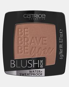 Catrice Blush Box 060 Bronze