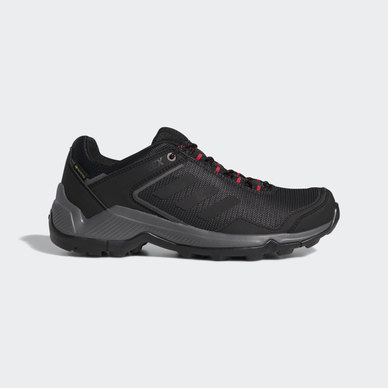 EASTRAIL GTX SHOES