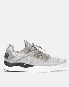 Puma Performance IGNITE Flash evoKNIT Running Shoes Grey