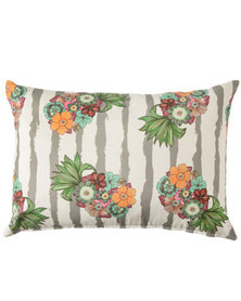 Lush Living - Aloha Collection - Scatter Cushion - Assorted