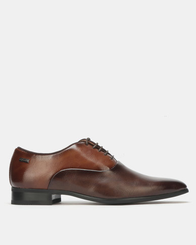 Gino Paoli Formal Lace Up Brown