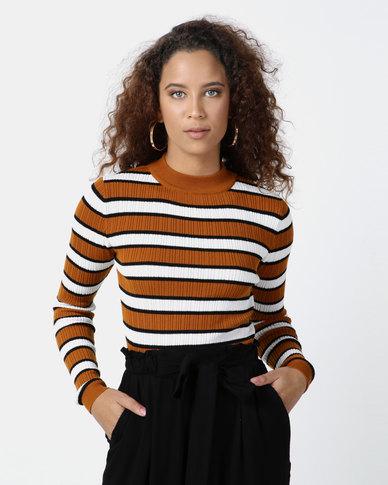 Legit Turtleneck Fitted Stripe Sweater Multi