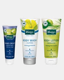 Kneipp Daily 3-Step Solution