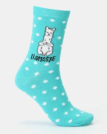 New Look Llamaste Slogan Socks Teal