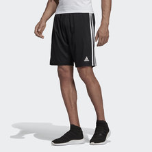 TIRO 19 TRAINING SHORTS