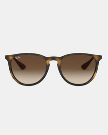 Ray-Ban Erika Classic Sunglasses Havana