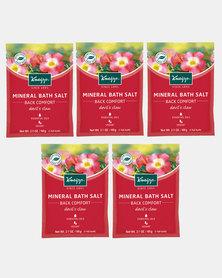 """Kneipp Mini Mineral Bath Salt Back Comfort """"Devil's Claw"""" 60 g Set of 2"""
