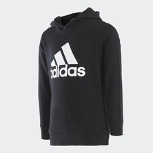 MUST HAVES BOS PO HOODY