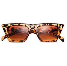 Third Sharp Sunglasses Tortoise