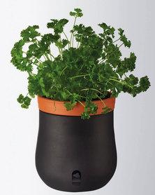Leonardo Self-Watering Plant Pot Planter Black Serra Large