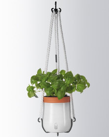 Leonardo Self-Watering Plant Pot Hanging White Serra Large
