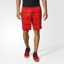 Climalite Speed Shorts