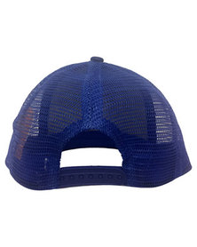 Character Brands Teenage Mutant Ninja Turtles Flatbill Cap Blue