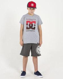 DC Boys City State T-Shirt Grey